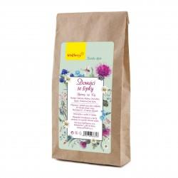 Domácí se šípky bylinný čaj 50g Wolfberry